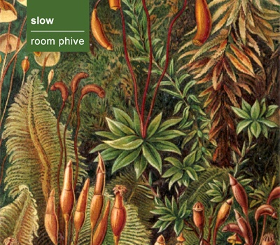 Slow - Room Phive (rb049)
