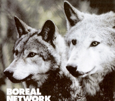 Boreal Network - Phase With The Moon (rtn014)